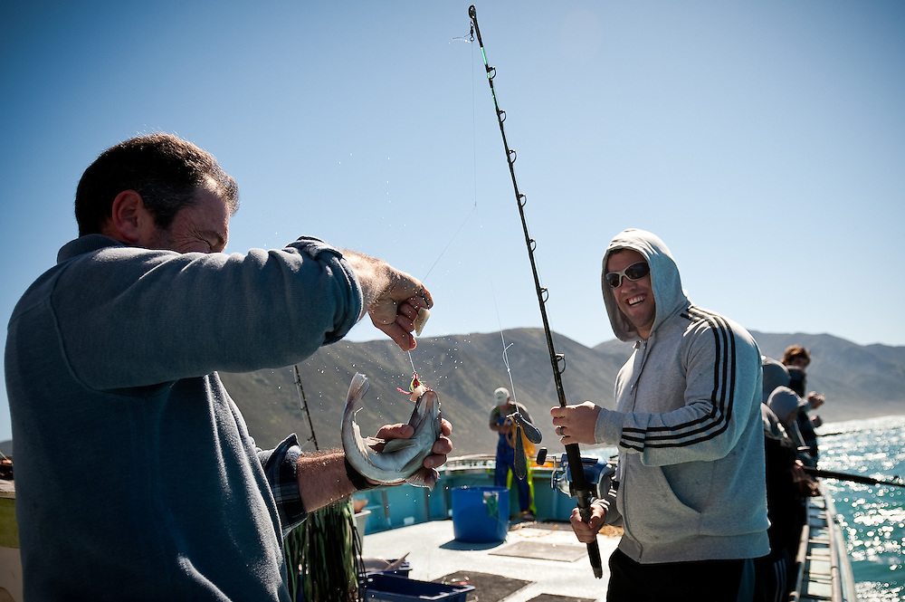 Corey Flynn lands a small (but legal) Blue Cod. Skipper Tony Muollo helps him with the catch. All Blacks team members go Line Fishing in the Cook Strait with Tony and Carlo Muollo on board the Marco Polo and then go to Fish Fins in Newtown to eat freshly caught groper...Photo by Mark Tantrum   www.marktantrum.com