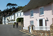 Traditional white and pink cottages in St Mawes, Cornwall, England, UK