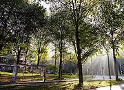 Openbaar vervoer in Den Haag 2014 - Public transport in The Hague, Netherlands 2014