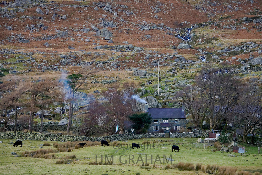 Hill farm in Snowdonia National Park, North Wales, United Kingdom