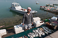 = fishermen and fish market in the port of  Doha  QATAR  ///  pecheurs et marché aux poisssons dans le port de   Doha  QATAR +