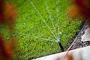 Water Conservation Sprinkler System