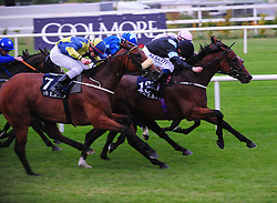 Horse Zap & Chris Hayes (black colours) win the Sovereign Path Handicap during day one of the 2018 Longines Irish Champions Weekend at Leopardstown Racecourse, Dublin.