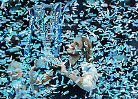 Tennis - 2019 Nitto ATP Finals at The O2 - Day Eight<br /> <br /> Singles Final : Stefanos Tsitsipas (Greece) Vs. Dominic Thiem (Austria)<br /> <br /> Stefanos Tsitsipas (Greece) lifts the ATP trophy<br /> <br /> COLORSPORT/DANIEL BEARHAM