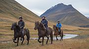 Corralling of horses in Eyjafjörður beginning of October 2017.