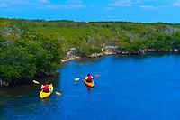 Sea kayaking, John Pennekamp Coral Reef State Park, Key Largo, Florida Keys, USA