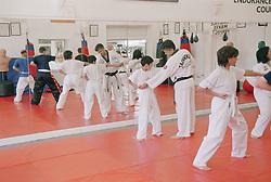 Training in Tae Kwon Do at Nottingham School of Martial Arts  Master Vohra's Dojang,