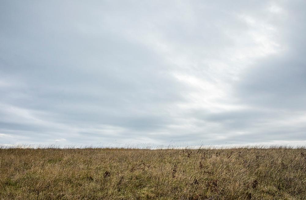 A grassy hill under an overcast cloudy sky, American Camp National Historical Park, San Juan Island, Washington, USA.