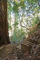 Pit toilet at Sykes Hot Springs, Pine Ridge Trail, Big Sur, California.