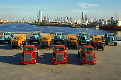 Fleet of colorful transport trucks parked at a dock