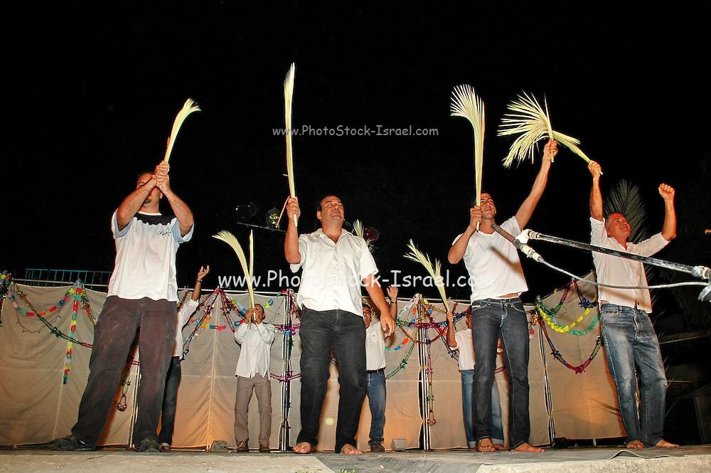 Israel, Jordan Valley, Kibbutz Ashdot Yaacov, Sukkoth celebration. The men of the Kibbutz doing the Lulav (Palm branch) dance