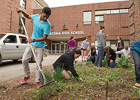 "Devi Dhakal and Samantha Silva work in the front gardens at Laconia High School during Saturday's ""clean up"" day for seniors to keep with their scheduled graduation date of June 6th.  (Karen Bobotas/for the Laconia Daily Sun)"