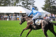 27 March 2010 :Danielle Hodson and MAKE BELIEVE go on to win the Sport of Queens Maiden Hurdle race.
