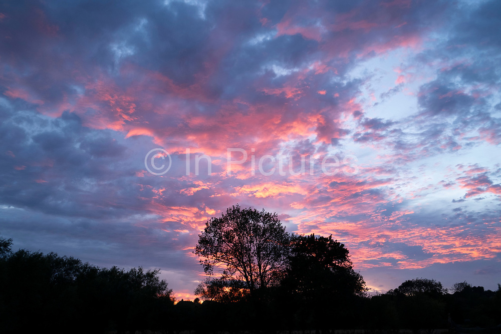 Silhouette of trees at sunset on 31st July 2020 in Welford-on-Avon, United Kingdom. Under a pink dramatic sky the outline of the tree is haloed by the clouds.