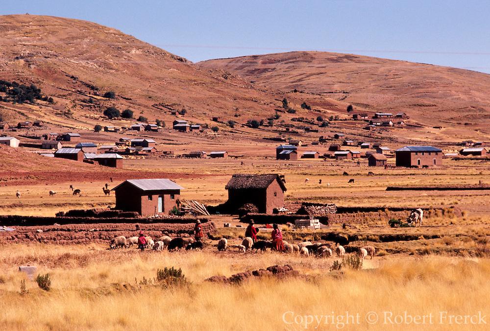 PERU, LAKE TITICACA Altiplano farms and herding sheep near Puno