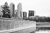 Bellevue, WA Downtown Park waterfall with sea gulls and the Bellevue Towers skyline - bw