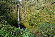 Akaka Falls on the Big Island of Hawaii.