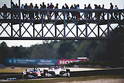 April 5-7, 2019: IndyCar Grand Prix of Alabama, Marco Andretti, Andretti Autosport