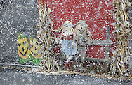 Middletown, New York - Halloween decorations, including two scarecrows, get covered in snow during a snowstorm on Oct. 29, 2011.