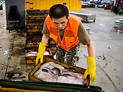 06 JUNE 2018 - SEOUL, SOUTH KOREA: A porter stack boxes of fresh frozen fish in the Noryangjin Fish Market. The Noryangjin Fish Market is the largest fish market in Seoul and has been in operation since 1927. It opened in the current location in 1971 and was renovated in 2015. The market serves both retail and wholesale customers and has become a tourist attraction in recent years.       PHOTO BY JACK KURTZ