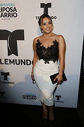 LOS ANGELES, CA - JUNE 26: Rosie Rivera arrives for the Screening Of Telemundo's 'Jenni Rivera: Mariposa De Barrio' at The GRAMMY Museum on June 26, 2017 in Los Angeles, California. Byline, credit, TV usage, web usage or linkback must read SILVEXPHOTO.COM. Failure to byline correctly will incur double the agreed fee. Tel: +1 714 504 6870.