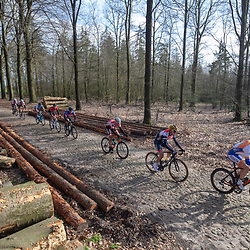 23-03-2019: Wielrennen: Drentse Dorpenomloop: Assen<br />-wielrennen - Assen - Drenthe - KNWU<br />Jelle Johannink