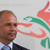 Jozsef Vago CEO of Solyom Airways attends a press conference of the newly founded airline company in Budapest, Hungary on July 24, 2013. ATTILA VOLGYI
