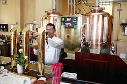 Pouring beer brewed on the premises at Taberna de la Muralla; Plaza Vieja; Havana; Cuba,