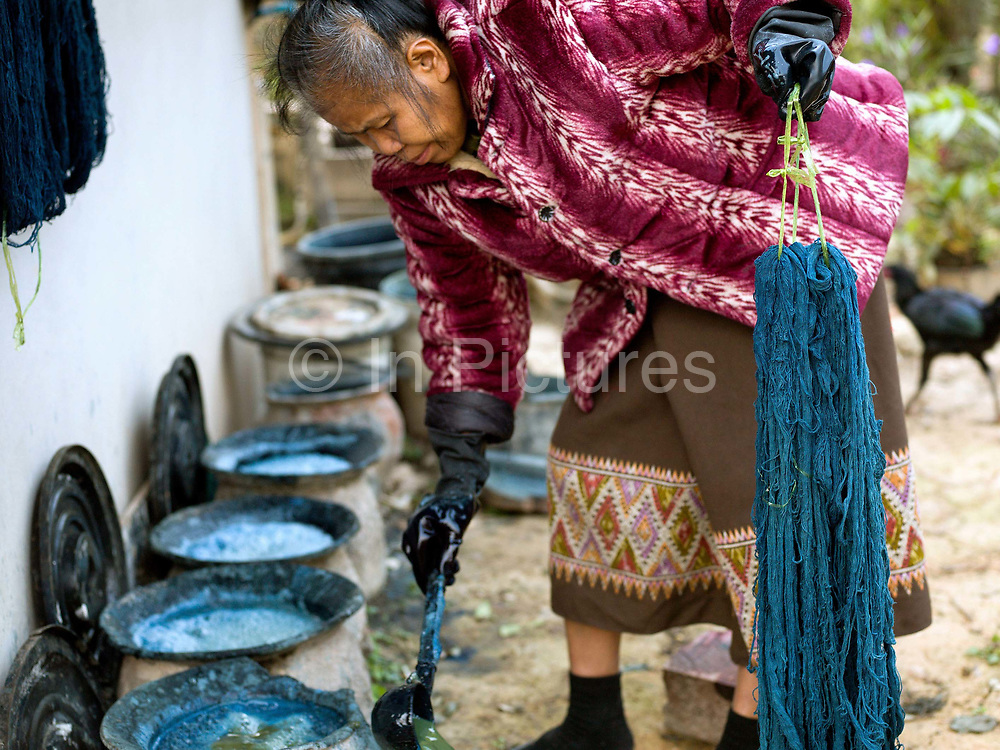 Pheng dyeing homegrown cotton in an indigo dye bath in traditional ceramic pots in the Tai Lue village of Ban Viengkao, Sayaboury province, Lao PDR. Indigo dye is made from the fresh leaves and stem of the indigo plant which are fermented and then mixed with limestone to turn it the distinctive blue colour. One of the most ethnically diverse countries in Southeast Asia, Laos has 49 officially recognised ethnic groups although there are many more self-identified and sub groups. These groups are distinguished by their own customs, beliefs and rituals.