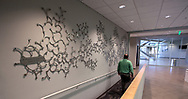 "Art installation, ""Branches"" by Windham Graves, located near the Dr. Frederic Levisetter Lecture Hall in AME Building at the Aero-Propulsion, Mechatronics and Energy Build (AME) at the FAMU-FSU College of Engineering in Tallahassee."
