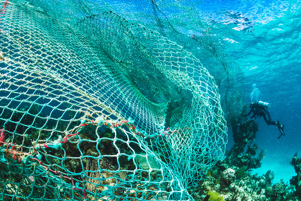 A scuba diver tries to free a large fishing net or ghost net from a coral reef in The Bahamas.