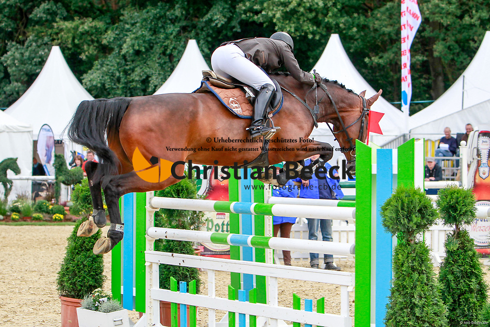 , Warendorf - Bundeschampionate  01. - 05.09.2010, Corofina 17 - Schulze Wiering, Grit
