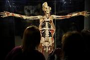 """20171029/ Nicolas Celaya - adhocFOTOS/ URUGUAY/ MONTEVIDEO/ RAMBLA/ Muestra """"Body Worlds Vital"""" del anatomista alemán Dr. Gunther von Hagens. <br /> En la foto: Muestra """"Body Worlds Vital"""" del anatomista alemán Dr. Gunther von Hagens.  Foto: Nicolás Celaya /adhocFOTOS"""