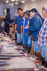 auctioneer and buyers, exchanging numbers over various species of billfish on pallets on the auction floor, Honolulu Fish Auction by United Fishing Agency, the only fresh tuna auction in the US, up to 160,000 pounds of fish can be auctioned in a day, Pier 38, Commercial Fishing Village, Honolulu, Oahu, Hawaii, USA