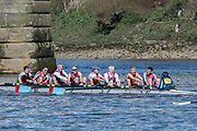 Mortlake/Chiswick, GREATER LONDON. United Kingdom. Tees Rowing Club, MasF.8+, competing at the 2017 Vesta Veterans Head of the River Race, The Championship Course, Putney to Mortlake on the River Thames.<br /> <br /> <br /> Sunday  26/03/2017<br /> <br /> [Mandatory Credit; Peter SPURRIER/Intersport Images]