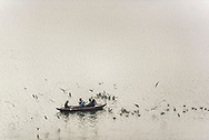 Boat on the River Ganges at sunrise, Varanasi, Uttar Pradesh, India