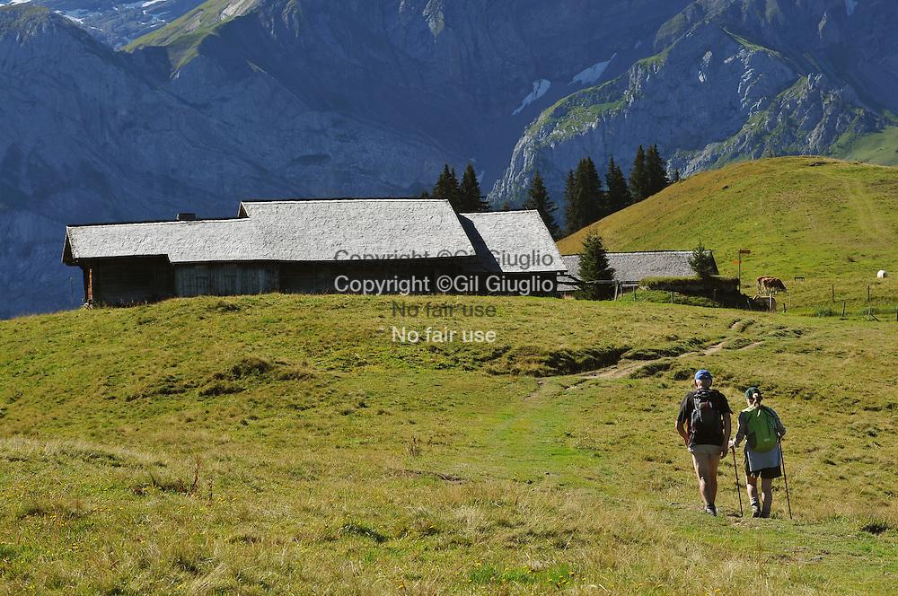 Suisse, Canton de Bern dans la région du Haut-Simmental // Switzerland, Bern canton, Hight-Simmental region