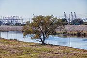 Los Angeles River near WIllow Street, Long Beach, California, USA