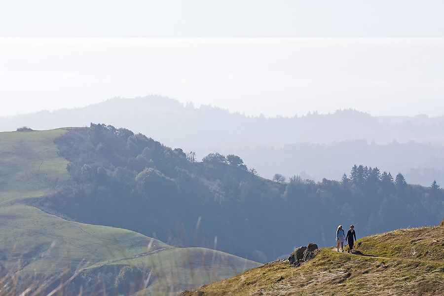 Two hikers walk along a trail in the Russian Ridge Open Space Preserve, a popular outdoor destination near Stanford, San Mateo County, California. The Pacific Ocean glimmers in the distance.