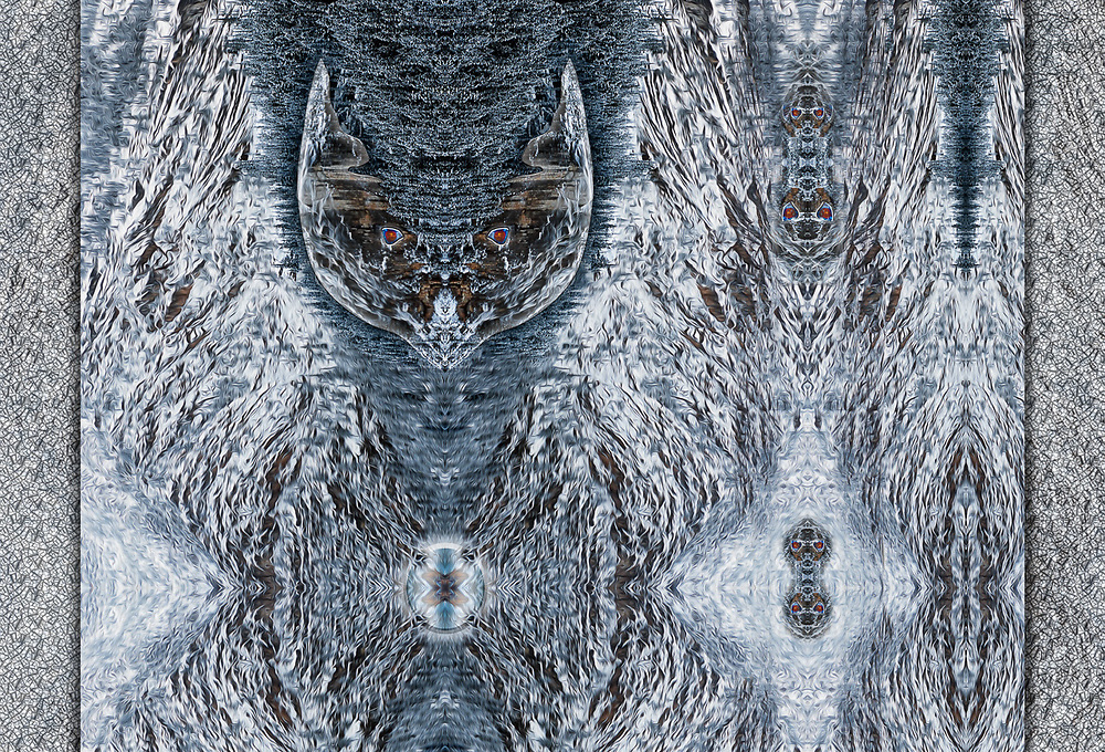 """The Great Snow Bird"", derivative image from a photo of the Washington Pass area, overcast light, September, North Cascades Highway, Okanogan National Forest, Washington, USA"
