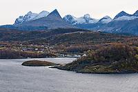 Saltstraumen Dive Center.Atlantic marine life, Saltstraumen, Bodö, Norway