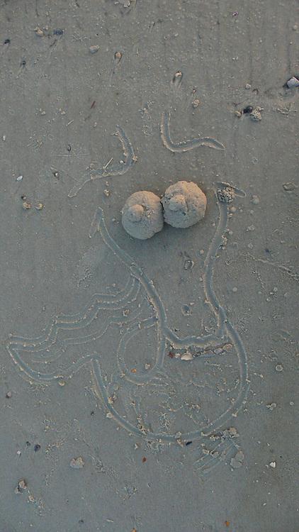 Mermaid drawn in sand, Florida
