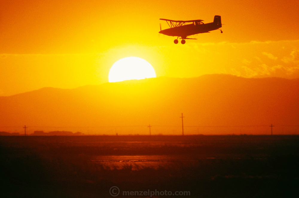 Crop dusting. Seeding rice by air in Richvale, California, USA.