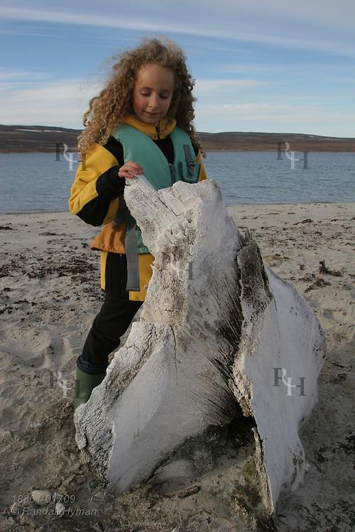 Little girl poses beside whale rostrum; Isabella Bay, Baffin Island; Nunavut, Canada