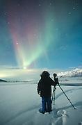 Alaska. Aurora borealis or northern lights. A photographer (Ellen Anderson) shoots the aurora near Palmer.