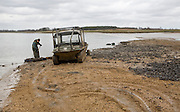 Men collecting mussels from the River Deben near Ramsholt, Suffolk, England