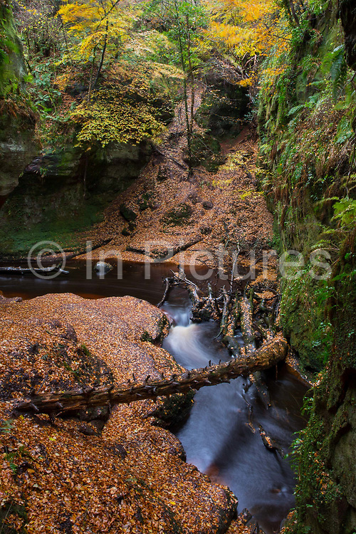 Devils Pulpit on the 3rd November 2018 in Dumgoyn in the United Kingdom. Long exposure of Devils Pulpit waterfall.