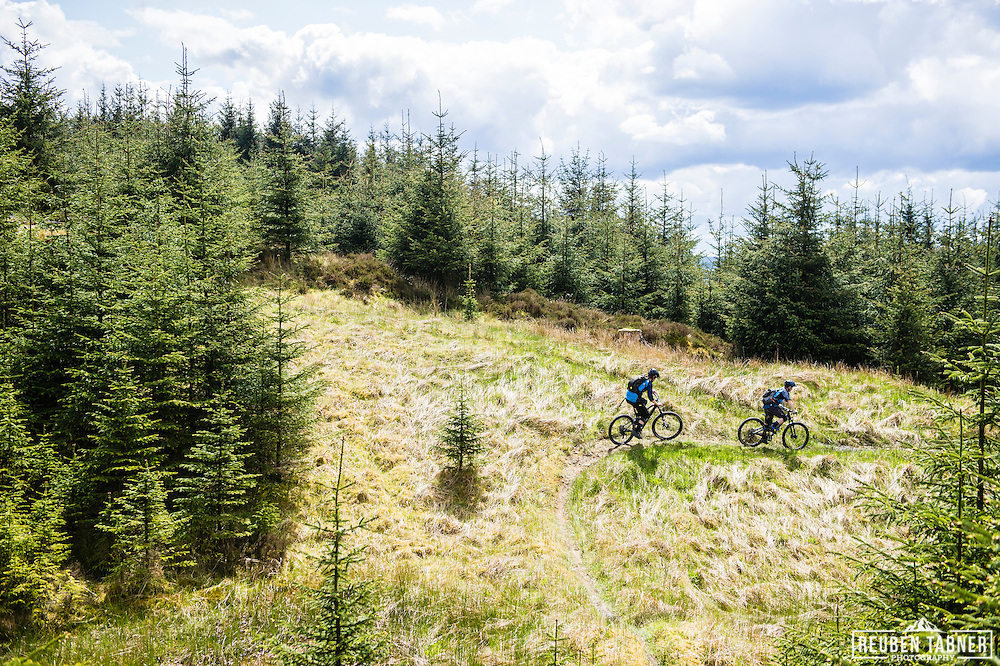 Ed Thomsett drops through the young trees at Kielder Forest on his Vitus Sommet CR.