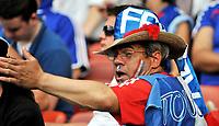 GEPA-0906085633 - ZUERICH,SCHWEIZ,09.JUN.08 - FUSSBALL - UEFA Europameisterschaft, EURO 2008, Rumaenien vs Frankreich, ROM vs FRA. Bild zeigt einen Fan von Frankreich.<br />Foto: GEPA pictures/ Oliver Lerch
