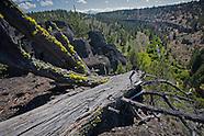 Whychus Canyon